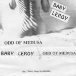 Leroy 1193